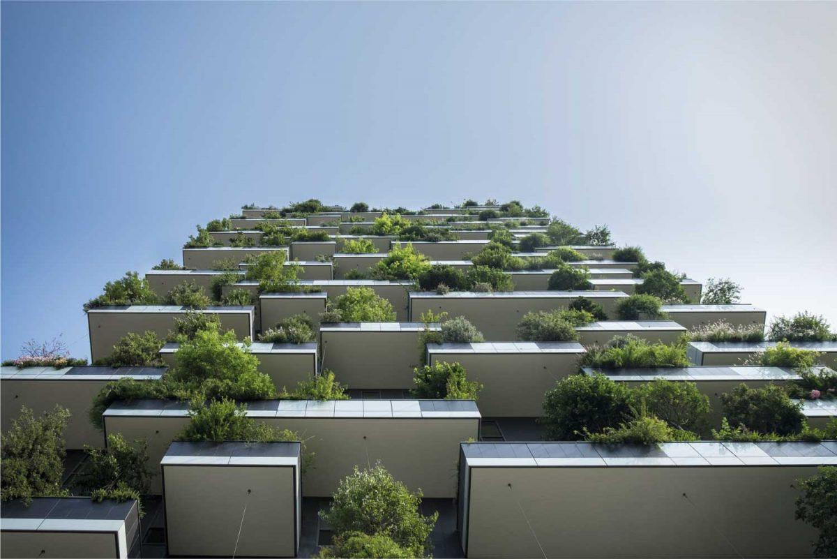 dutch-green-building-council-briq.png
